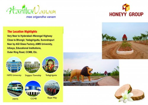 Haritha Vanam project details - Chandupatla