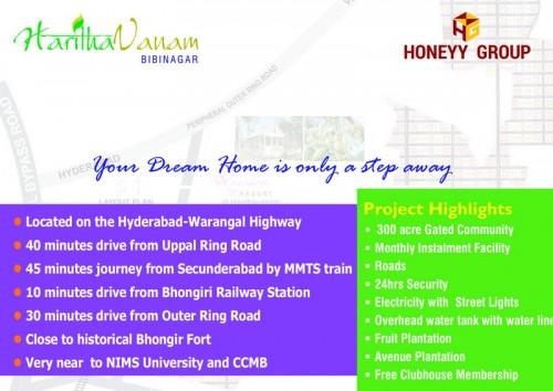 Haritha Vanam project details - Bibinagar